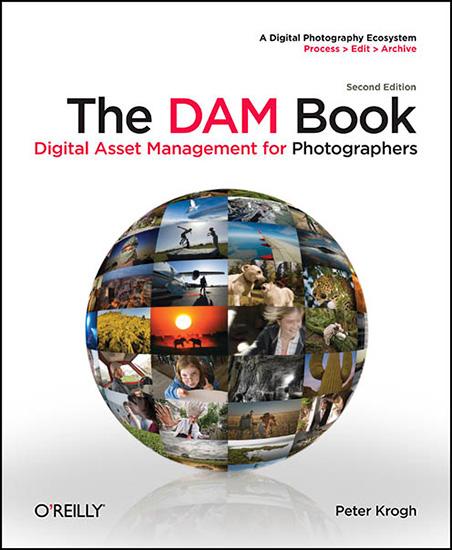 DAM_Book_Cover